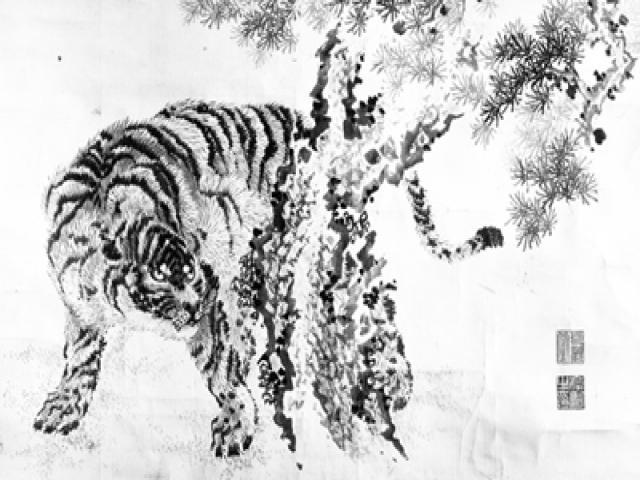 tigre-ridotta.jpg
