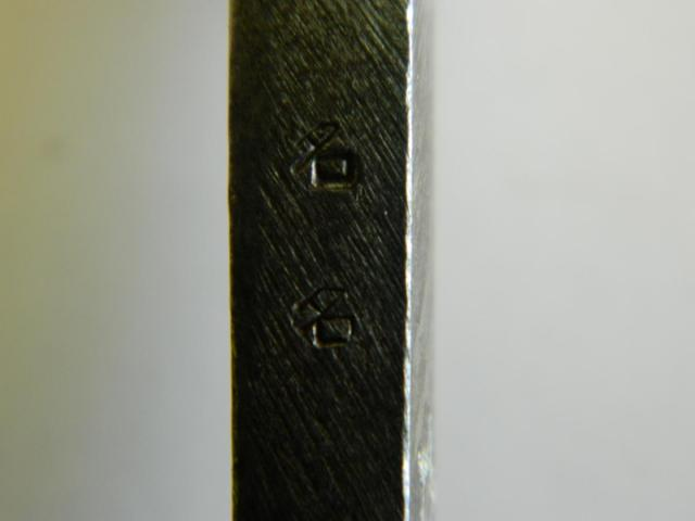 DSCN7385.JPG
