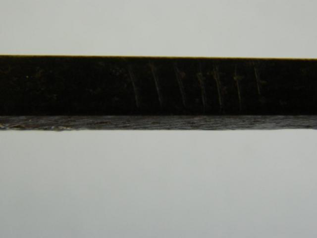 DSCN7387.JPG