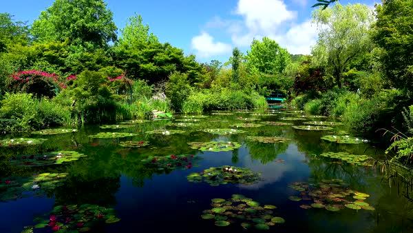 Kochi_water garden.jpg