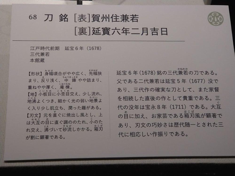 DSC_1170.JPG